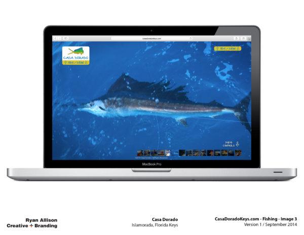 Casa Dorado Website Fishing 3 - Project - Ryan Allison Creative + Branding